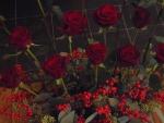 symbolisch bloemschikken rood